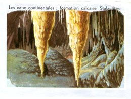 X54 / ANCIENNE IMAGE CHROMO AVEC DESCRIPTIF AU DOS / SERIE LES EAUX CONTINENTALES / STALACTITES - Chromos