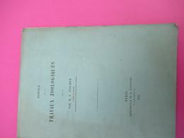 Notice/Zoologie/Les Travaux Zoologiques Par M P FISCHER/Aide-Naturaliste Au Muséum /Alph. Lavallée/ 1875    MDP123 - Libri, Riviste, Fumetti