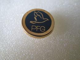 PIN'S    P F G  ARTHUS BERTRAND N° 3 - Badges