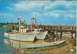 CPM 85 -  L' Aiguillon La Faute Sur Mer  - Le Port 1982 Au Dos - Other Municipalities