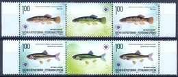 BHRS 2010-512-3 FISH, BOSNA AND HERZEGOVINA-R.SRBSKA, 2 X 2v + Labels, MNH - Bosnien-Herzegowina