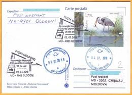 "2018 Moldova Moldavie Fauna Used  Nature, Nature Reserve ""Padurea Domneasca"". Birds.Gray Heron - Cigognes & échassiers"