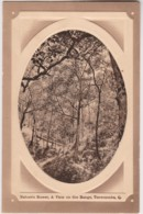 Nature's Bower, A View On The Range, Toowoomba, Queensland - Vintage With Message, 1911 - Towoomba / Darling Downs