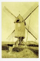 D135 - Oorderen - Molen Van Muisbroek - 1930 Gesloopt - Molen - Moulin - Mill - Mühle - Belgique