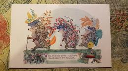 Hedgehog. MUSHROOMS -  Mushroom - Old Soviet Postcard - 1968 - Champignon - Champignons