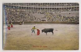 AI42 Bull Fighting - Suerte De Capa - Corrida