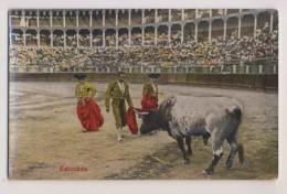 AI42 Bull Fighting - Estocada - Corrida