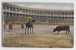 AI42 Bull Fighting - Suerte De Vara - Corrida