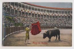 AI42 Bull Fighting - Pase De Muleta - Corrida