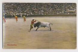 AI42 Bull Fighting - Banderillas - Corrida
