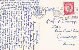 AP52 World Health Organization Fights Malaria - 1962 Postmark On Postcard - Disease