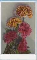 AS52 Flowers - Carnations - Flowers