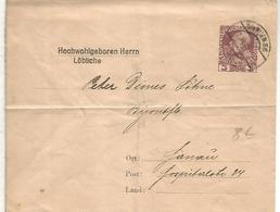 AUSTRIA ENTERO POSTAL PRIVADO HOCHWOHIGEBOREN HERRN LÖBLICHE - 1850-1918 Imperio
