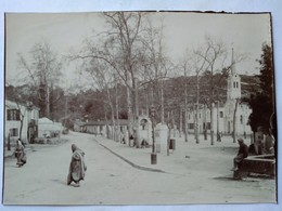 Algérie -  BIRMANDREIS - Entrée Du Village , Route De Birkadem  Photo Ancienne Début XX ème - Lieux