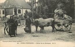 ES PYRENEES Types Montagnards - Retour De La Montagne - Gros Plan - Other Municipalities