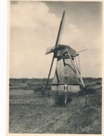 Nederland - 1939 - 7,5 Cent Veth, Briefkaart G254s - Ongebruikt - Friesche Bovenkruier Watermolen Wolvega - Material Postal