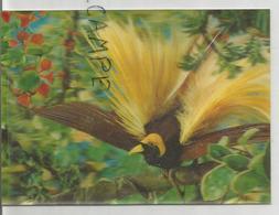Carte 3D. Oiseau Du Paradis. - Cartes Stéréoscopiques