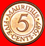 + PORTRAIT (1987-2016): MAURITIUS ★ 5 CENTS 1987 MINT LUSTER! LOW START ★ NO RESERVE! - Mauritius