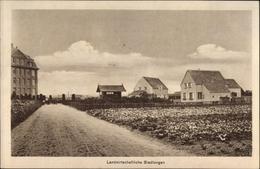 Cp Köln Am Rhein, Landwirtschaftliche Siedlungen, Ausstellung Für Kriegsfürsorge 1916 - Other