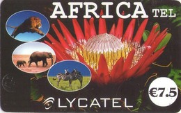 FRANCIA, (PREPAGO). FAUNA, ZEBRES LION ELEPHANTS. AFRICA TEL - 7,5 €. FR-PRE-LYC-0003Cd. (811) - Tarjetas Telefónicas