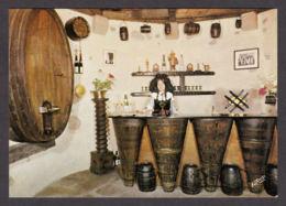 62639/ AMMERSCHWIHR, Les Vins D'Alsace *TEMPE*, Caveau De Dégustation De La Tour Des Bourgeois - Francia