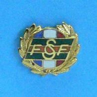 1 PIN'S // ** F S C F / INSIGNE DE L'HONNEUR FÉDÉRAL VERMEIL / FÉDÉRATION SPORTIVE & CULTURELLE FRANCE ** . (A B. Paris) - Pin's