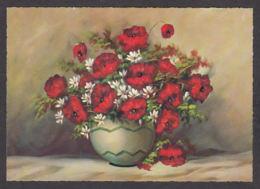 93385/ FLEURS, Illustration, Coquelicots - Fleurs
