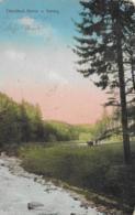 AK 0275  Chotéboŕ - Partie U Valchy Um 1921 - Tschechische Republik