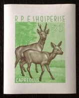 Albania 1962; Wild Animals, Fauna; Imperf. Sheet! MNH /** VF; CV 240 Euro!! - Stamps