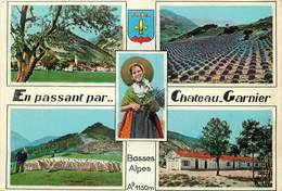 """/ CPSM FRANCE 04 """"Chateau Garnier"""" - Otros Municipios"""