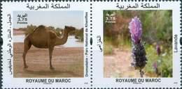 MOROCCO FAUNE FLORE FLORA FAUNA WILD DROMEDARY NEW MINT 2018 - Morocco (1956-...)