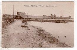 Cpa Aigues Mortes Les Remparts - Aigues-Mortes