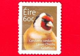 IRLANDA - EIRE - Usato - 2013 - Animali - Uccelli - Cardellino - (Carduelis Carduelis) - 60 - 1949-... Repubblica D'Irlanda