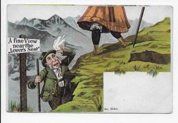 Edwardian Humour - A Fine View - Humour