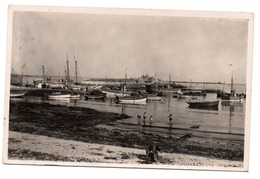 29 - LESCONIL - Le Port - Lesconil