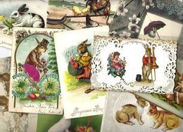 Lot 1816 De 10 CPA Lapins Bunny Dont Position Humaine Fantaisies Déstockage Pour Revendeurs Ou Collectionneurs - Postcards