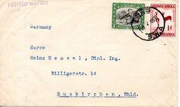 SUD-OUEST AFRICAIN (SWA). N°102 De 1931 Sur Enveloppe Ayant Circulé. Outarde. - Grues Et Gruiformes