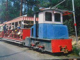 Petit Train Cap Ferret - Eisenbahnen