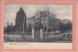 OUDE POSTKAART ZWITSERLAND - SCHWEIZ -     MANNEDORF - FORTUNA  1900'S - ZH Zurich