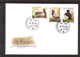 Buzin - Luxembourg - Les Canards Sur Nos étangs - 1985-.. Oiseaux (Buzin)