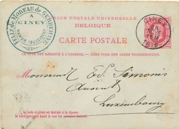 Belgique. CP 16  Demande  Ciney > Luxembourg   1879 - Stamped Stationery