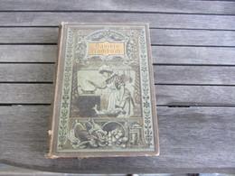 Kochbuch Livre De Recettes Davidis - Bücher, Zeitschriften, Comics