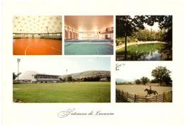 Postcard Stadium Satriano Di Lucania Italia Campo Sportivo Stadion Stadio Estadio Stade Sports Football Soccer - Fussball