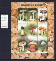 Comores Feuillet Neuf ** TTB 9 Valeurs Champignon  Mushroom Cogumelo Setas - Pilze
