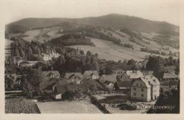AK -  (Sudetenland) NIEDER LINDEWIESE (Lipova-lazne) - Panorama 1938 - Tschechische Republik