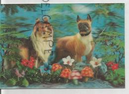 Chiens, Dogs. Shetland Et Boxer. Champignons Et Fleurs. - Cartes Stéréoscopiques
