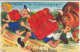 Amélie-les-Bains. Carte à Système. - Other Municipalities