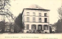 Souvenir De Walcourt - Vue Du Château De L'Ennery (W V S Edit Léonard 1906) - Walcourt