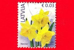 LETTONIA - LATVIJA - Usato - 2016 - Fiori - Narciso - Wild Daffodil (Narcissus Pseudonarcissus) - 0.03 - Lettonia