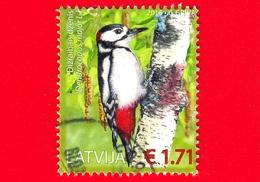 LETTONIA - LATVIJA - Usato - 2016 - Uccelli - Picchio - Great Spotted Woodpecker (Dendrocopos Major) - 1.71 - Lettonia